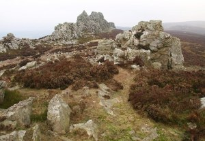 Stiperstones_-_geograph.org.uk_-_1111765